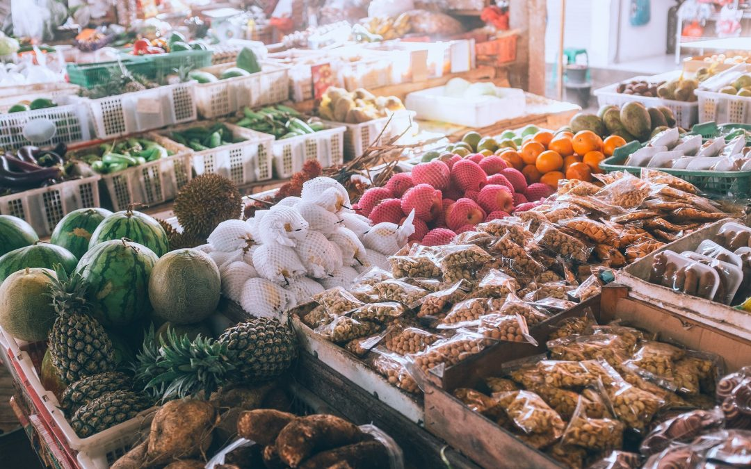 Why does a business need an in-store product sampling company? The services and marketing strategy of Dog and Pony agency